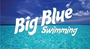Big Blue Web Banner