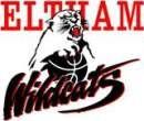 Wildcats Logo
