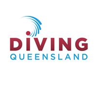 DQ-Logo-1000sq - White (1)