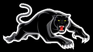 Panthers-Logo-Prim-RGB-Neg