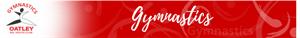 Gymnastics Banner