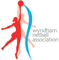 wyndnetball